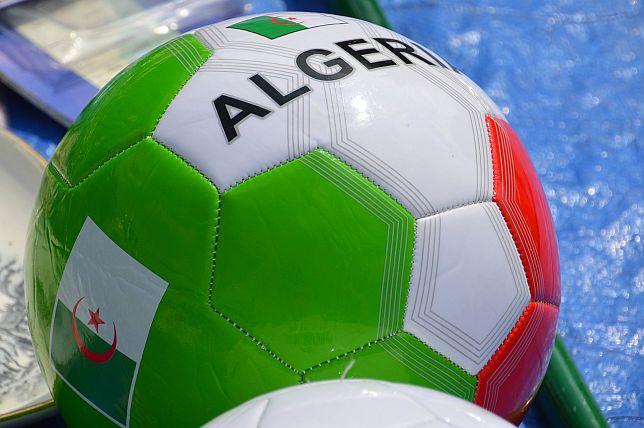 Afrika Cup Halbfinale 2019 - Wett-Tipps Algerien vs Nigeria