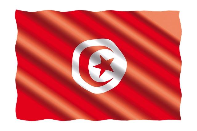 Afrika Cup Wett-Tipps zum Viertelfinale Madagaskar Tunesien