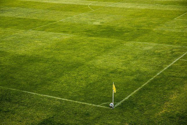 Hallescher FC Wett-Tipps