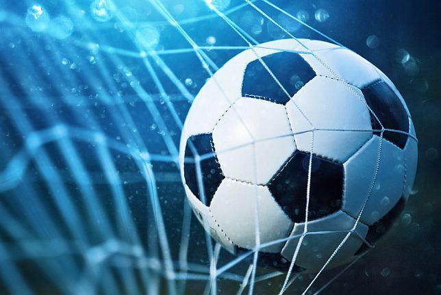 Dynamo Dresden Aufstieg 2 Liga